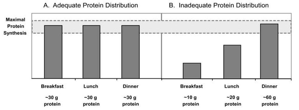 ProteinDistributionChart